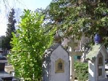 Visite du cimetière russe, par Nicole
