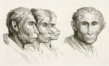 L'Attaque des hommes-singes (Le Projet Fedorov, épisode 8)